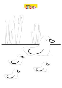 kaczki ćwiczenie grafomotoryczne.